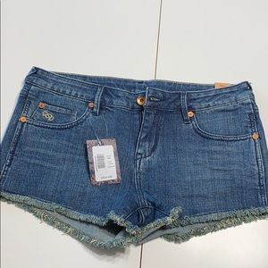 NWT Quiksilver Lamrocks Buckler Blue Shorts